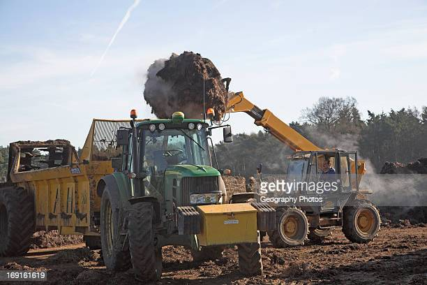 Tractor loading animal dung onto a trailer Butley Suffolk England