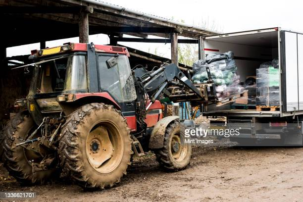 tractor loading pallet with freshly picked vegetables into a lorry. - pallet industrial equipment stock pictures, royalty-free photos & images