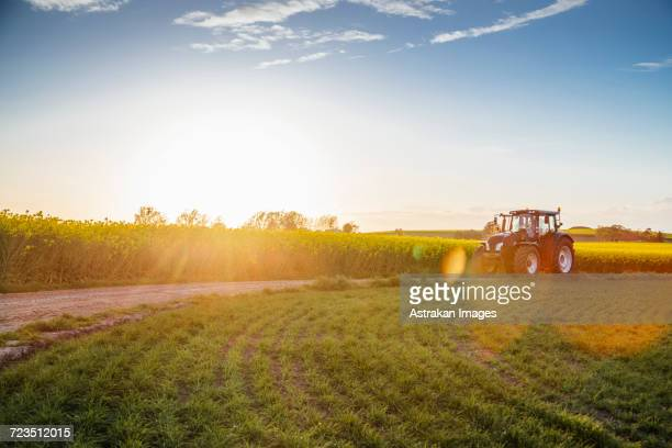 Tractor on dirt road amidst field during sunset