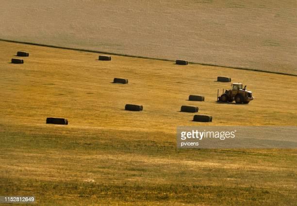tractor - castilla y león bildbanksfoton och bilder