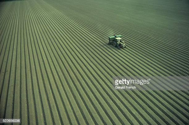tractor planting crops - 耕す ストックフォトと画像