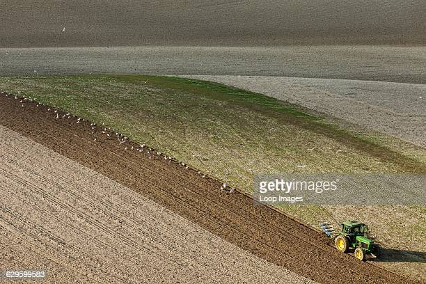 Tractor ploughing fields on the South Downs Alfriston England