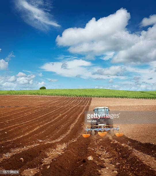 Tractor ploughing on the field