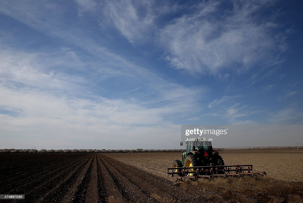 A tractor plows a field on February 25, 2014 in Firebaugh, California. Almond farmer Barry Baker of Baker Farming had 1,000 acres, 20 percent, of his almond trees removed because he doesn't have access to enough water to keep them watered as the California drought continues. The U.S. Bureau of Reclamation officials announced this past Friday that they will not be providing Central Valley farmers with any water from the federally run system of reservoirs and canals fed by mountain runoff.