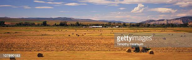 tractor raking and baling hay, mountains beyond - timothy hearsum stock photos and pictures