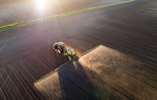Tractor spraying young crops in field 956592662