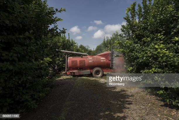 A tractor sprays water on lemon trees at a farm in the town of Tafi Viejo in the province of Tucuman Argentina on Thursday March 23 2017 Argentina is...