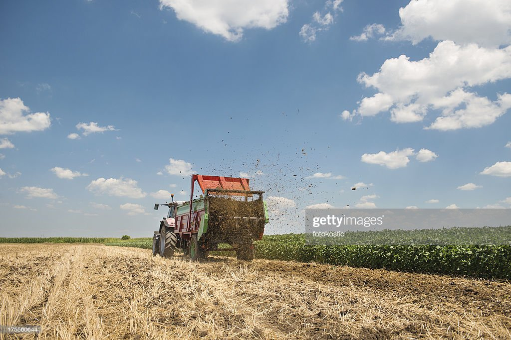 A tractor spreading manure on a field : Stock Photo