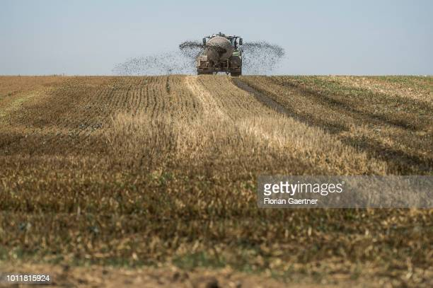 A tractor spreads manure on a harvested field on August 01 2018 in Mengelsdorf Germany Farmers complain harvest losses because of the dry weather...