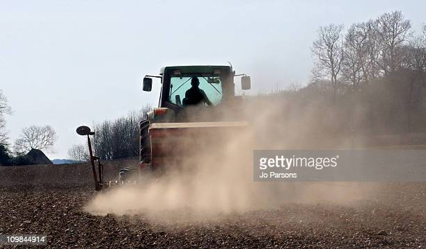 Tractor Spring Sowing on Farm