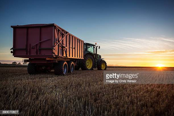 tractor sunset - cereal plant stock pictures, royalty-free photos & images