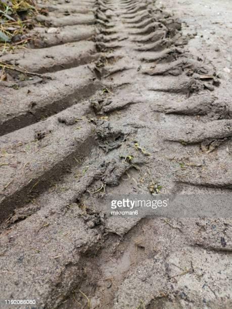 tractor tire tread marks in soil - straßenrand stock-fotos und bilder