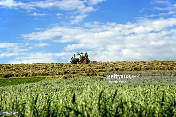 Tractor turning hay in a field