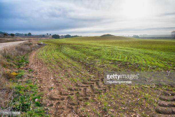 tractor wheels in the cultivated field. - spain stock pictures, royalty-free photos & images