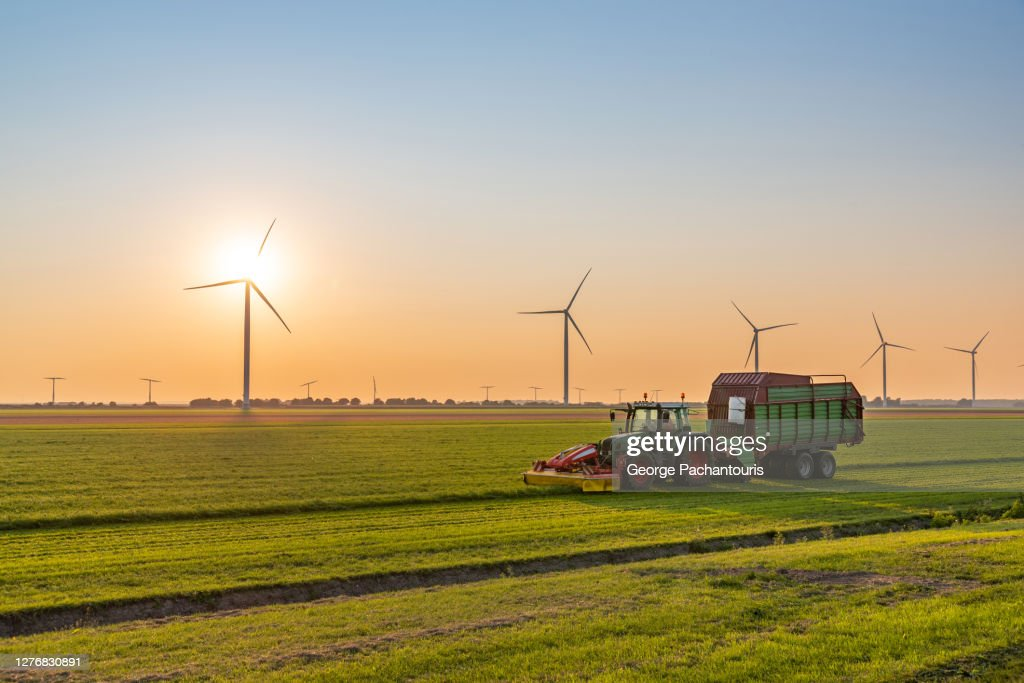 Tractor with trailer harvesting on a field near wind turbines at sunset : Stockfoto