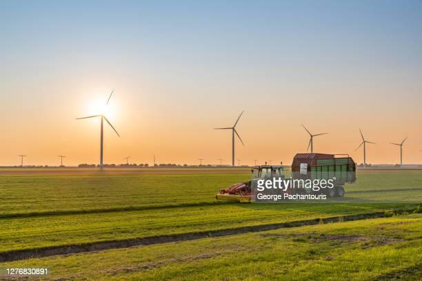 tractor with trailer harvesting on a field near wind turbines at sunset - jordbruk bildbanksfoton och bilder