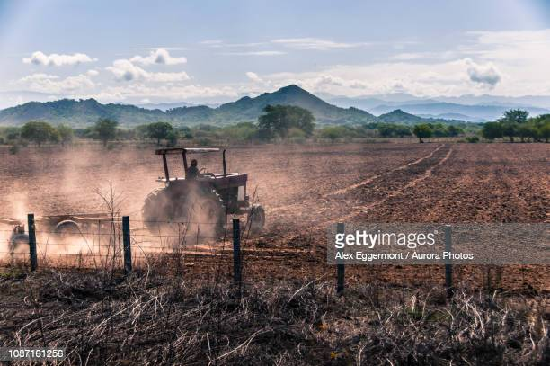 Tractor working in field, Cabo San Lucas, Baja California Sur, Mexico