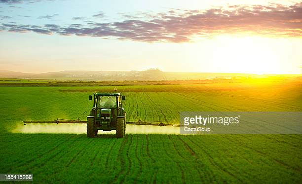 tractor working in field of wheat - spuiten activiteit stockfoto's en -beelden