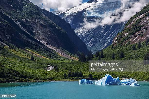 Tracy Arm Fjord. Alaska, United States of America