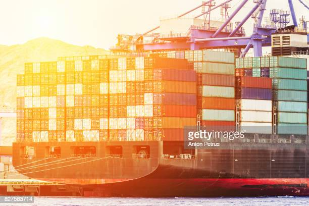 trade port shipping - jordanian workforce stock pictures, royalty-free photos & images