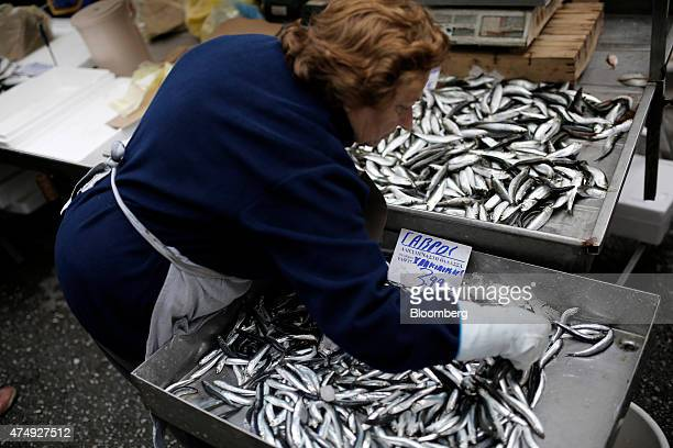 A trader arranges a display of fresh fish for sale at a farmer's market on Kassandrou street in Thessaloniki Greece on Thursday May 28 2015 Greek...