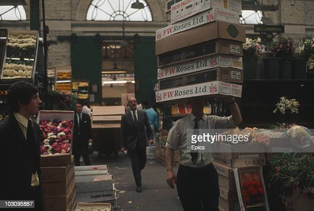 A trader balances boxes of roses on his head in Covent Garden's historic flower market London circa 1970