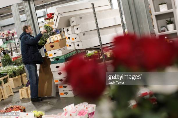 A trader boxes bunches of flowers up at New Covent Garden Flower Market ahead of Valentine's Day on February 13 2018 in London England New Covent...
