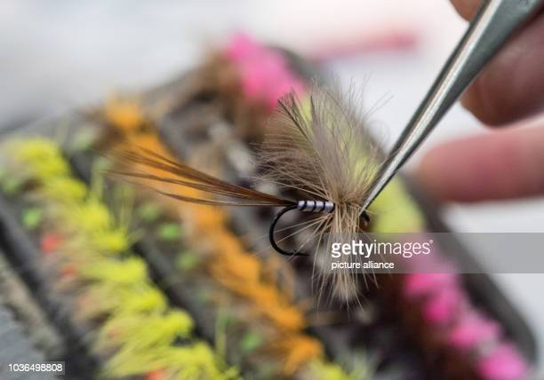 A trader shows his flyfishing lures at the 'Jagd Hund' and 'Fisch Angel' double trade fair in Dortmund Germany 09 February 2016 Europe's largest...
