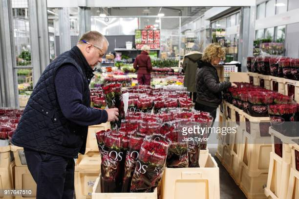 A trader sorts through bunches of roses at New Covent Garden Flower Market ahead of Valentine's Day on February 13 2018 in London England New Covent...