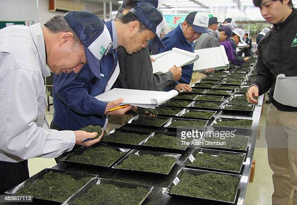 Traders check the quality of newly harvested Japanese green tea on April 18, 2014 in Ureshino, Saga, Japan.
