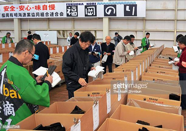 Traders check the quality of seaweeds during the first auction of the season on November 25 2014 in Yanagawa Fukuoka Japan