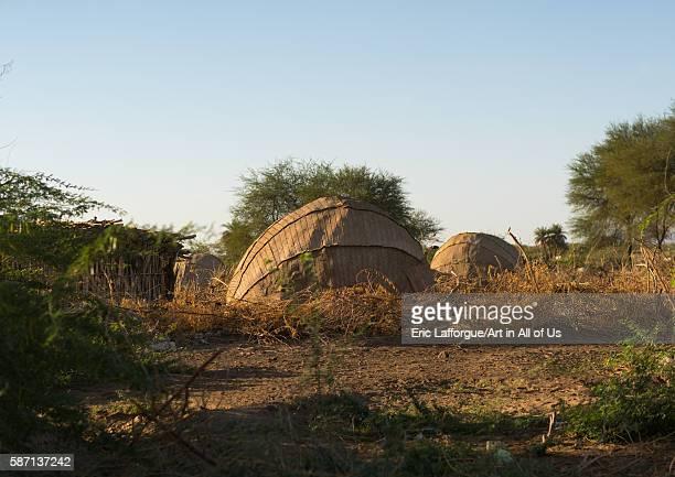 Traditional afar tribe village afar region afambo Ethiopia on February 29 2016 in Afambo Ethiopia