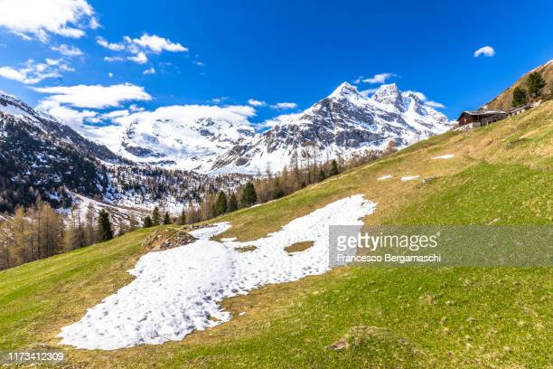 traditional ancient hut in the meadows during spring thaw. snow capped peaks in the background. valdidentro, valtellina, lombardy, italy. - italia ストックフォトと画像