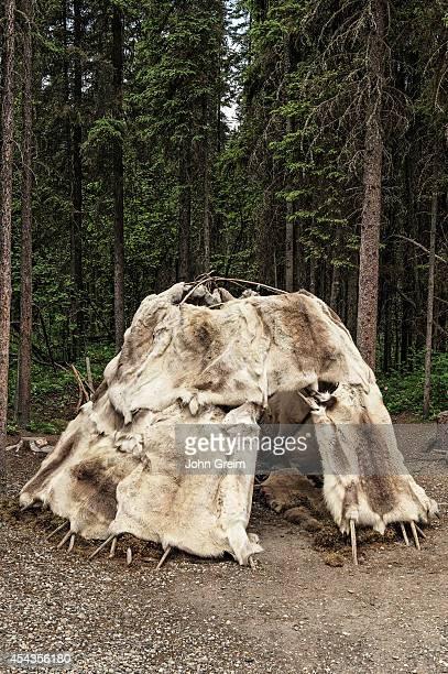 Traditional Athabascan shelter at Chena Indian Village