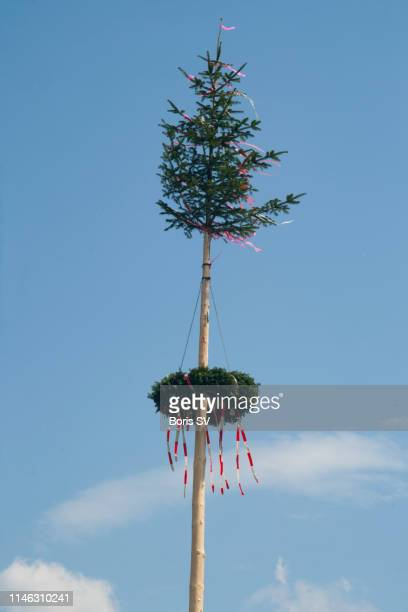 traditional austrian maypole with wreath - maypole stock pictures, royalty-free photos & images