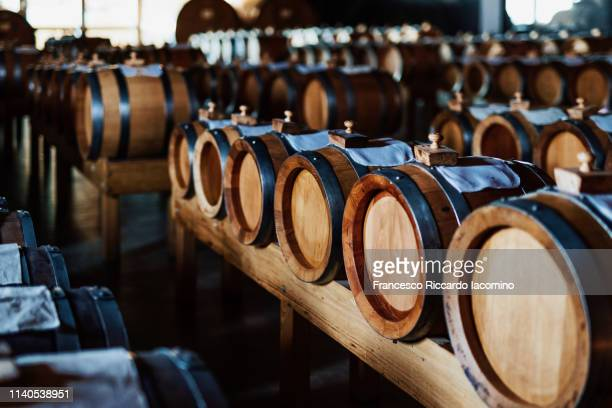 traditional balsamic vinegar barrels - modena stock pictures, royalty-free photos & images