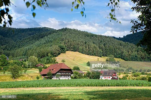 Traditional Black Forest House
