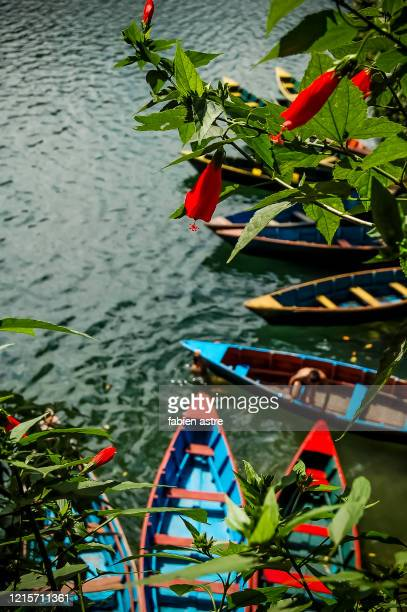traditional boat in phewa lake, pokhara nepal - pokhara stock pictures, royalty-free photos & images