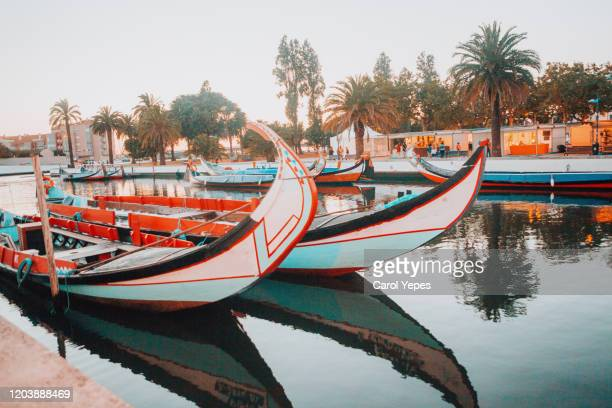traditional boats on the canal in aveiro, portugal - アヴェイロ県 ストックフォトと画像