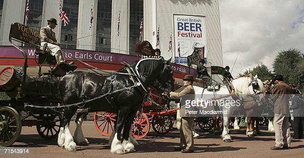 Traditional brewer's shire horses and wagons gather before the start of the Great British Beer Festival on July 31, 2006 in London. The Festival will...