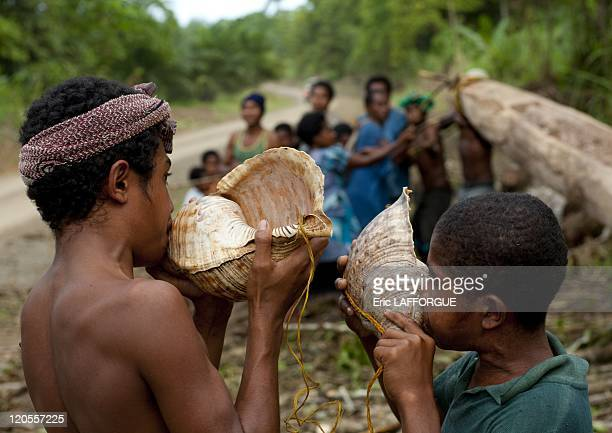 Traditional call it a shell in Papua New Guinea on October 03 2009 In the area of Alotau we crossed villagers who were carving a giant boat The boat...