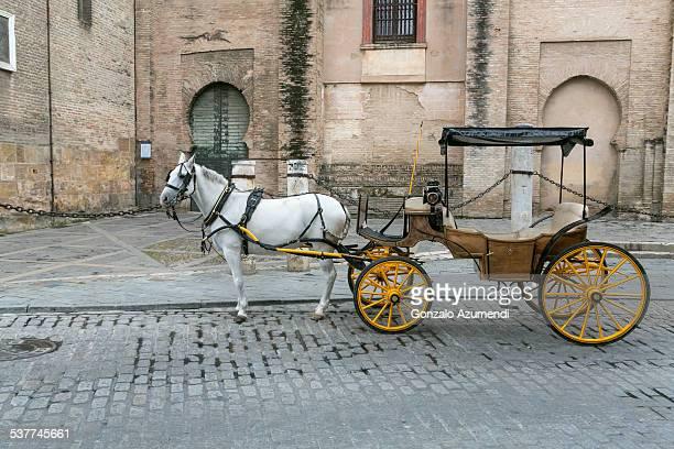 traditional carriage in seville - pferdeantrieb stock-fotos und bilder