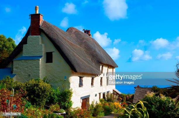 Traditional charming thatched cottage on the lizard penisular in cornwall England.
