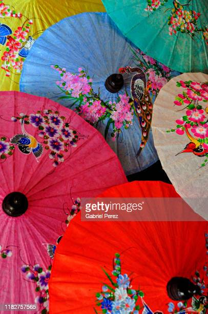 traditional chiang mai umbrellas - mulberry tree stock pictures, royalty-free photos & images