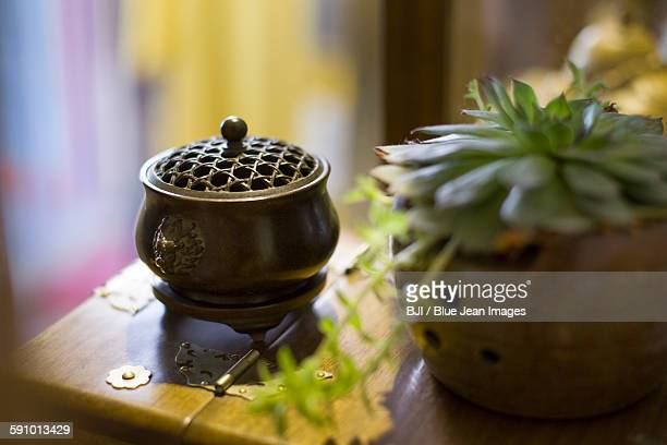 Traditional Chinese censer and potted plant