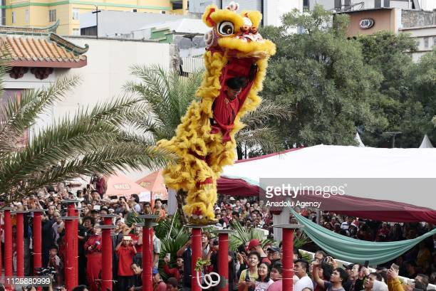 Traditional Chinese dragon Barongsai performs 'Lion Dance' during 'Cap Go Meh' festival that marks the end of the Chinese Lunar New Year celebration...
