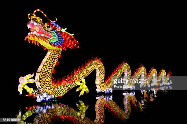 traditional chinese dragon reflected in the water - chinese dragon stock photos and pictures