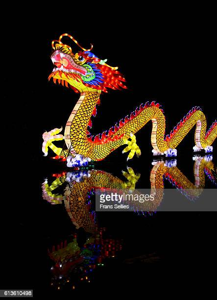 traditional chinese dragon reflected in the water - chinese dragon stock pictures, royalty-free photos & images