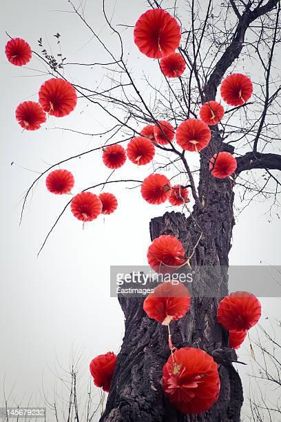 Traditional Chinese lanterns