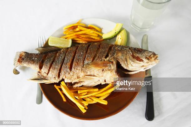 Traditional cuisine, grilled Spotfin croaker with sweet potato fries and avocado wedges, Nicaragua